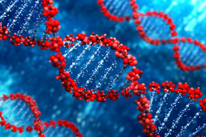 DNA sample options